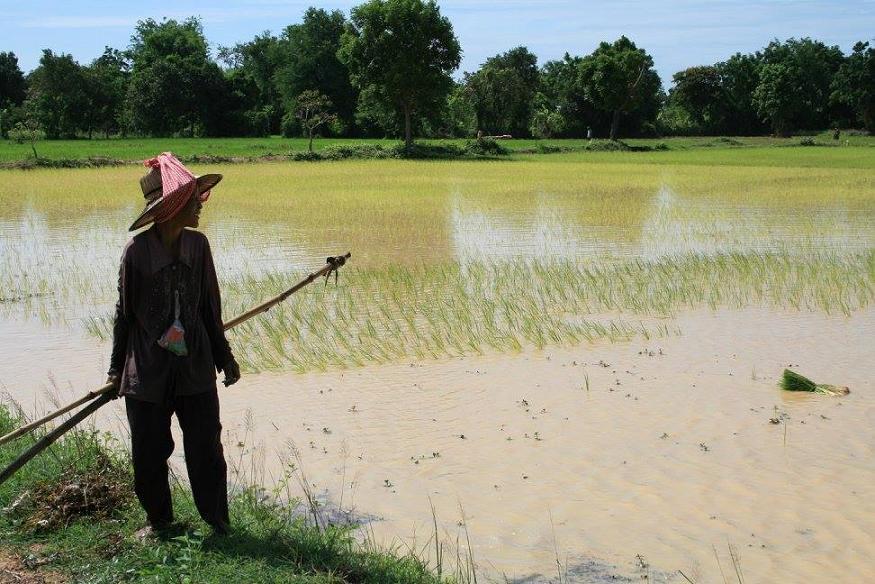 viaggio in cambogia