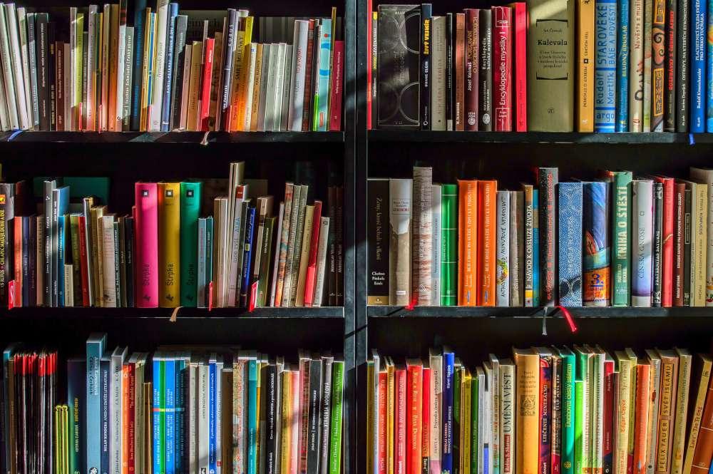 viaggiare coi libri titoli